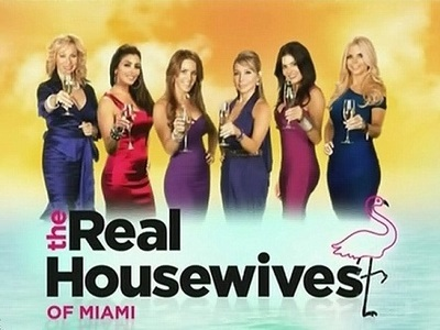 The Real Housewives of Miami tv show photo
