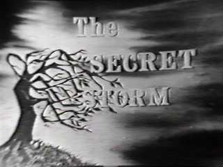 The Secret Storm tv show photo