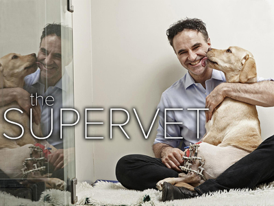 The Supervet (UK) tv show photo