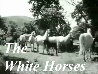 The White Horses (YU) (Dubbed)