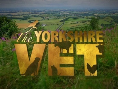 The Yorkshire Vet (UK)