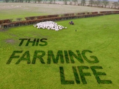 This Farming Life (UK) tv show photo