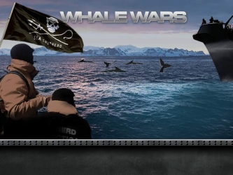 Whale Wars tv show photo