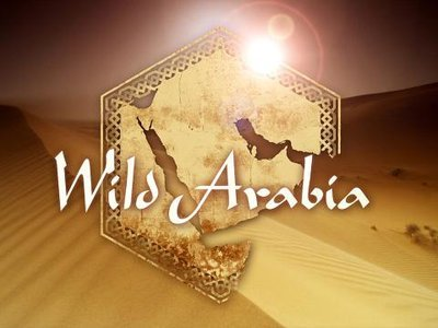 Wild Arabia (UK) tv show photo