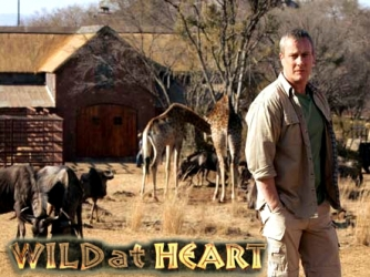 Wild at Heart (UK) tv show photo