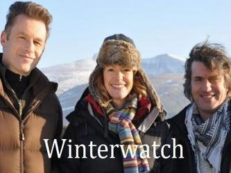 Winterwatch (UK) tv show photo