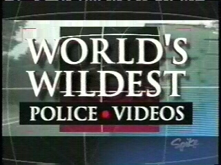 World's Wildest Police Videos tv show photo
