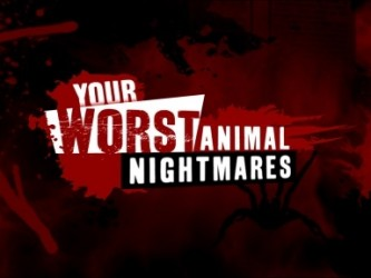 Your Worst Animal Nightmares