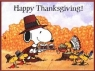 Charlie Brown Thanksgiving, A tv show