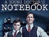 Young Doctor's Notebook, A tv show