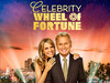 Celebrity Wheel of Fortune tv show