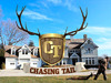 Chasing Tail TV Show