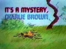 It's a Mystery, Charlie Brown TV Show