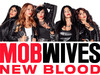 Mob Wives: New Blood TV Show