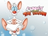 Pinky and the Brain tv show