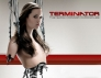 Terminator: The Sarah Connor Chronicles TV Show