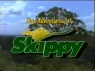 Adventures of Skippy (AU), The tv show
