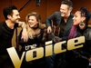 The Voice TV Show