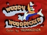Woody Woodpecker Show, The tv show