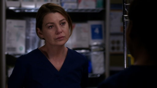 S13E21 Meredith and Maggie Fight Over Riggs