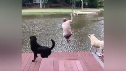 S0E0 Watch This Dog Completely Freak Out When He Thinks His Owner's Drowning