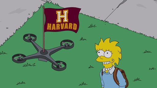 S29E8 Lisa Accepts To Go To Harvard