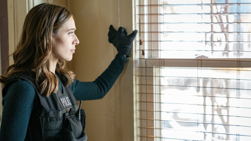 Chicago PD S05E11 Confidential