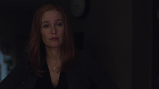 S11E5 A Dark Figure Is Seen Throughout Scully's Home