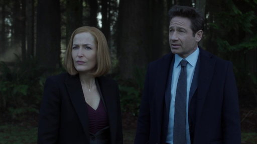 S11E8 Mulder & Scully Investigate The Playground