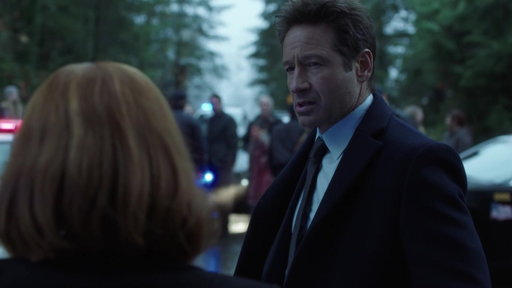 S11E8 Mulder & Scully Search The House Of A Felon