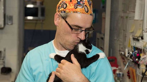 S0E0 Shelter workers cuddle with dogs and cats waking up from anesthesia