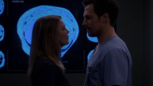 S15E8 DeLuca Makes a Bold Move on Meredith